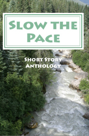 Slow the Pace Contest Anthology